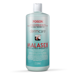 MALASEB Medicated Shampooแชมพูรักษายีสต์ เชื้อรา แบคทีเรียขนาด 1,000 ml